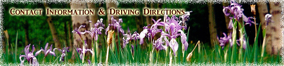 Contact Information & Driving Directions